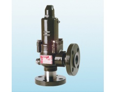 safety valves 10000-small